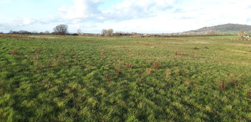 Land At Naas Lane Quedgeley
