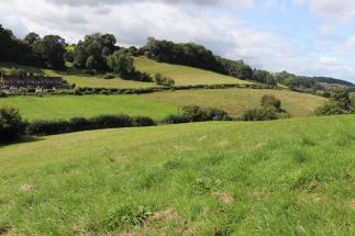 Land At Pingry Lane Coleford